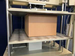 packaging in cartone